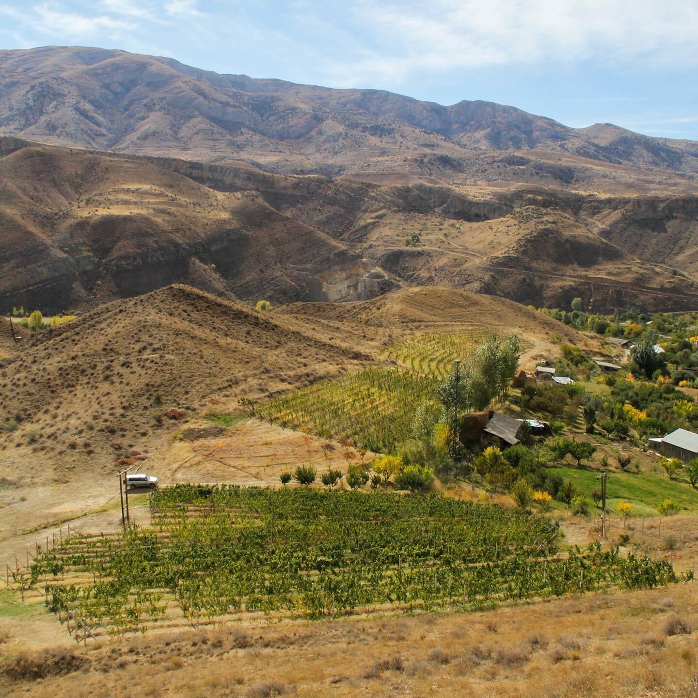 Argoria - Spring in Armenia